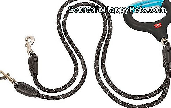 Wigzo Dual Dog Gel Rope Leash