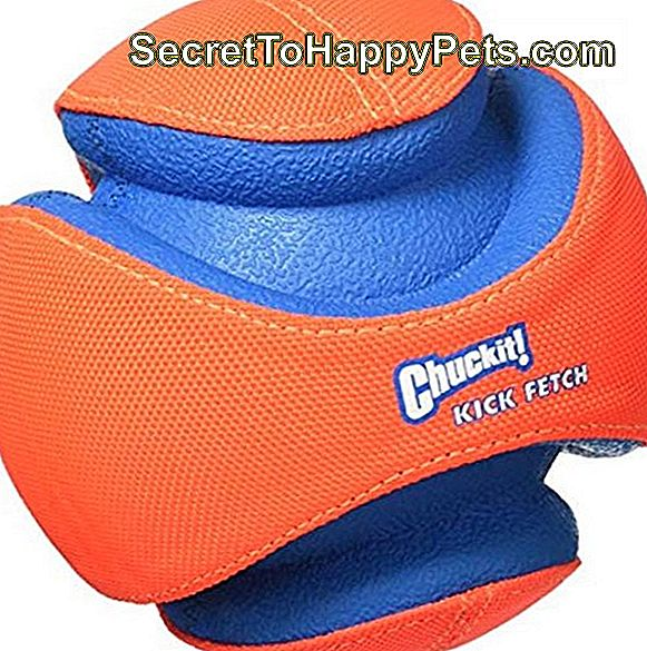 Chuckit! Kick Fetch Ball Ball