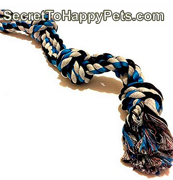 Mary & Kate Dog Rope Toy