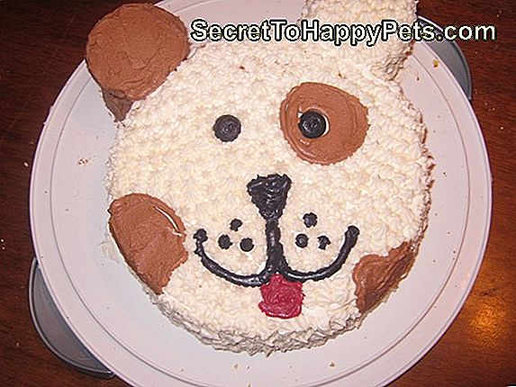 Easy Frosting For Dog Cakes